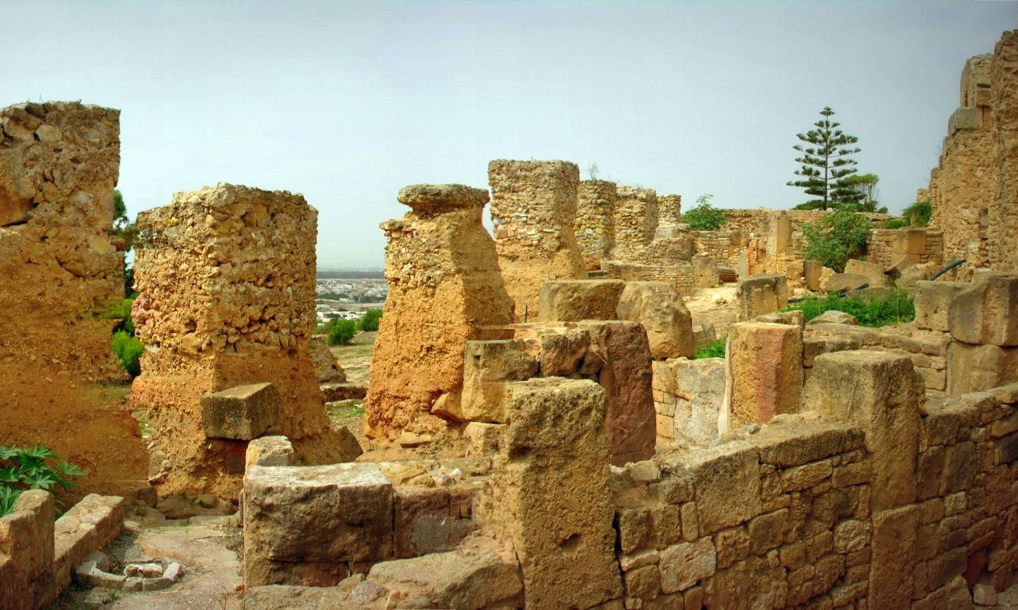 Scuola Archeologica Italiana di Cartagine (SAIC)